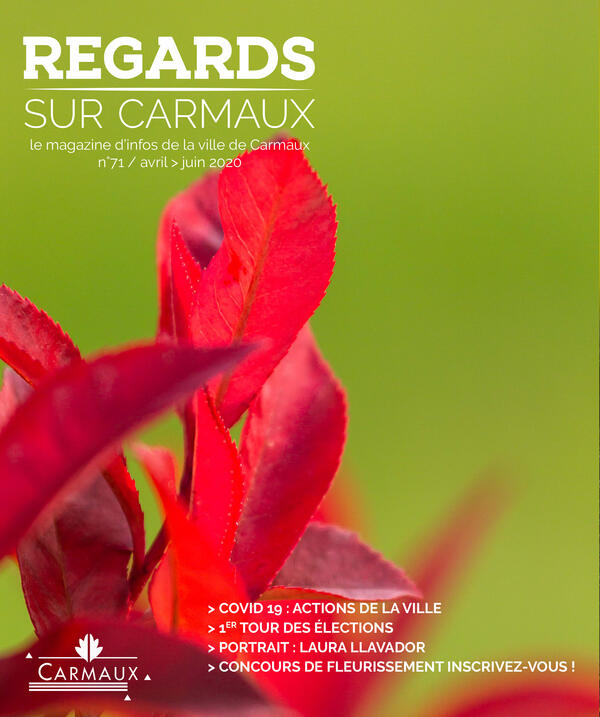 Publication: Magazine municipal // Regards sur Carmaux  - RSC 71 - avril 2020
